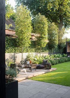 Garden Screening Ideas - Screening can be both decorative and sensible. From a well-placed plant to upkeep complimentary fence, right here are some imaginative garden screening ideas. Back Gardens, Small Gardens, Outdoor Gardens, Small Backyard Design, Backyard Ideas For Small Yards, Garden Screening, Screening Ideas, Garden Design Plans, Garden Pictures