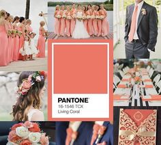 Coral Home Decor, Coral Color, Colour, Live Coral, Italy Wedding, Color Of The Year, Decoration, Color Trends, Foto E Video