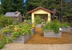 begetable garden design with raised beds