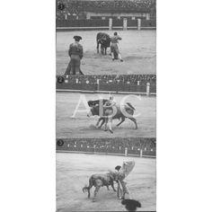 LA CORRIDA DE TOROS DE AYER EN MADRID. 1.-GAONA ENTRANDO A MATAR. 2.-BELMONTE EN UN PASE DE MULETA. 3.-DOMINGUIN TOREANDO DE CAPA:1919 Descarga y compra fotografías históricas en | abcfoto.abc.es