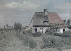 Maison frisonne prés de Rexpoëde. (Houtkerque ?) Photo autochrome de Paul Castelnau 9 Septembre 1917
