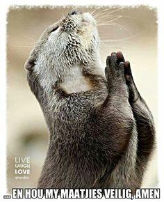 Gebedjie vir my maatjies