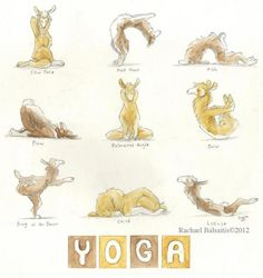 umm, yoga llamas?  Would be fun to watch mine do this in the field