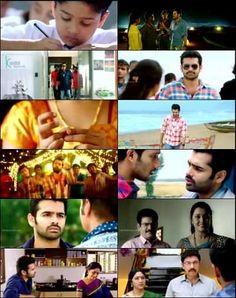nenu-sailaja-2016-full-telugu-movie-download-300mb-700mb-torrent-utorrent-kickass-dvdscr
