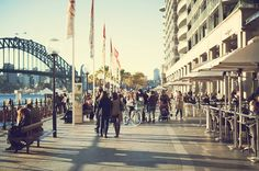 Circular Quay, Sydney (stretches around to the Opera House)  | Photo by Beautifully Suddenly