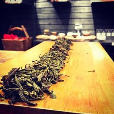 Doing lines of #fenghuang #dancong with @geosug and @baron_von_sillywoof. Three cultivars landing at the #teabar soon! #PhoenixOolong