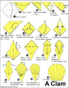 http://en.origami-club.com/sea/clam/clam/index.html