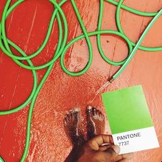 The Pantone Project by Paul Octavious