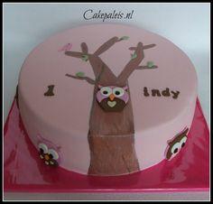 Owl cake Uilen taart