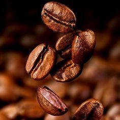 A R O M A  D I  C A F F É  Te invitamos a conocer las distinguidas características nuestro producto en cada taza del mejor café.  #AromaDiCaffé  Especie: Arábica. Variedad: Catuay-Caturra. Origen: Boconó Edo. Trujillo. Altura: 1400 msnm. Proceso: 100% lavado. Tostado: Medio. Perfil de taza: Cuerpo elevado acidez media y aromas frutales.  #MomentosAroma #SaboresAroma #ExperienciaAroma #Caracas #MejoresMomentos #Amistad #Compartir #Café #CaféVenezolano #Coffee #CoffeePic #CoffeeLovers…