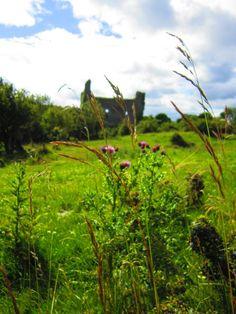 Rindúin Castle medieval ruins Norman period. Rinnagan, County Roscommon, Ireland