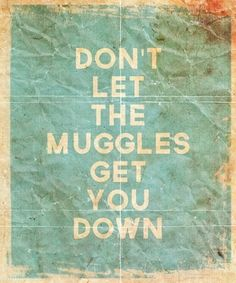 Don't let the Muggles get you down funny quote vintage typography movie harry potter lol muggles