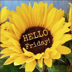 Hello Friday friday friday quotes hello friday friday images friday quotes and sayings friday sayings Good Morning Friday Images, Friday Morning, Good Morning Good Night, Morning Pictures, Morning Images, Morning Pics, Morning Board, Friday Weekend, Good Friday