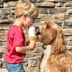 This Adorable Love Story Between Year-Old Boy And His Dog Has An Important Message - World's largest collection of cat memes and other animals Dogs And Kids, Animals For Kids, Animals And Pets, Dogs And Puppies, Cute Animals, Wild Animals, Doggies, Baby Animals, Mans Best Friend