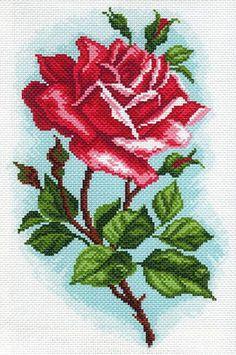 1587-roza-osiriya-risynok-na-kanve-mp.jpg (398×600)