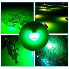 Deep Drop Fishing Light – SunriseBlack Drop Lights, Battery Lights, Ice Fishing House, Fishing Boats, Portable Led Lights, Fish Lamp, Waterproof Led Lights, Fishing Lights, Underwater Fish