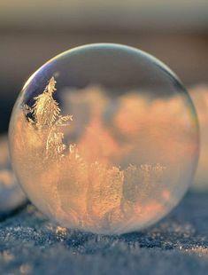 frozen bubbles captured by talented Washington based photographer Angela Kelly.