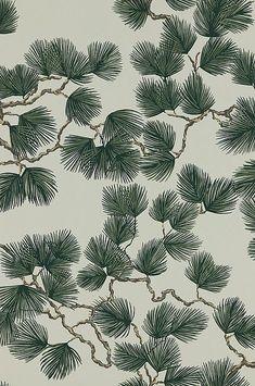 Pine by Sandberg - Green - Wallpaper : Wallpaper Direct Forest Wallpaper, Green Wallpaper, Flower Wallpaper, Pattern Wallpaper, Toile Wallpaper, Art Nouveau Design, Inspirational Wallpapers, Pine Forest, Home Living