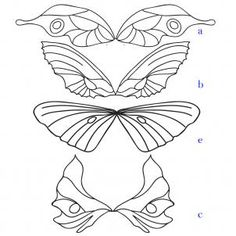 How to Draw Fairy Wings, Step by Step, Fairies, Fantasy, FREE ...