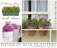 10 window box projects...i like the ones with holes for pots