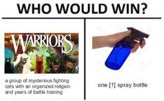 warriors cats | Tumblr