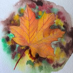 Even though I don't know much about watercolors, I love experimenting and seeing how it goes. 😊 I spent some time blending the leaf evenly and really bringing forth those yellows and oranges. Also shading and highlighting watercolor paint is challenging, so I'm happy with this end result. 🍁 . . . #naturepainting #watercolorpainting #fallcolors #fallleaves #autumnleaves #kunst #norskkunst #høst #høstfarger #høstkunst Watercolour Painting, Watercolors, Nature Paintings, Autumn Leaves, Amazing Art, Fall, Happy, Art, Autumn