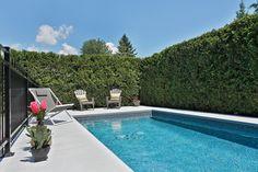 Piscine Trévi Fuzion Wonderful Places, Swimming Pools, New Homes, Future, Outdoor Decor, Home Decor, Gardens, Apartments, Pools