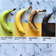 Pantone Food - Quand les aliments matchent avec les couleurs Pantone