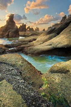 Shi Shi Beach and Point of the Arches, Washington State, United States.