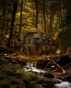 forests, cottag, dream, fairy tales, black forest
