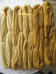 natural dyeing, walnut tree