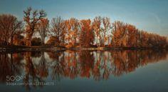 Isar River by silviatimea