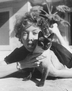 Gloria Grahame with siamese