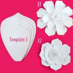 Paper Flower Template DIY Kit by PaperPoshEvents1 on Etsy flowerslovers http://gelinshop.com/ppost/40039884167011891/
