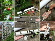 DIY Strawberry Tube Planter