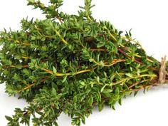 Herbs, Plank, Herb, Planks, Medicinal Plants