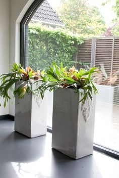 One way to beautify the entrance of your home is to place some flower pots close to the door. Here are several front door flower pots to inspire you.