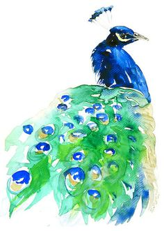 Really love this. Peacock Archival Print of Original Watercolor by Eva Forest contemporary artwork