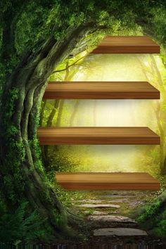 Wood Shelves in Tree Wallpaper