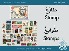 Stamp - Stamps