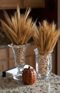 Diy centerpieces 284078688978306916 - 24 Warming And Cozy Wheat Decorations For Fall Wheat Centerpieces, Wheat Decorations, Church Altar Decorations, Thanksgiving Centerpieces, Fall Home Decor, Autumn Home, Holiday Decor, Church Flowers, Fall Flowers