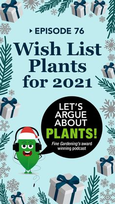 It's that time of year when we dream of all the plants we'd buy if a blank check showed up in our stockings. Some are weird, some are workhorses we never got around to purchasing, and some are brand new offerings that will only become available in 2021. 