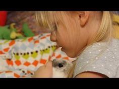 - piosenki dla dzieci i mam Music, Youtube, Animals, Musica, Musik, Animales, Animaux, Muziek, Animal