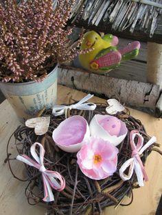 Hnízdo ptačí slečny-skladem