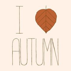 i love autumn.