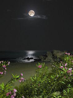 moonlight beach (The beach at night in San Juan de los Terreros) by ice tea Beautiful Moon, Beautiful World, Beautiful Images, Stunningly Beautiful, Beautiful Beaches, Lune Orange, Beach At Night, Shoot The Moon, Moon Shadow