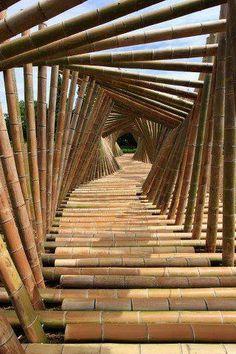 bambu!
