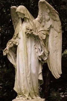 Cemetery Angels, Cemetery Statues, Cemetery Art, Angel Statues, Buddha Statues, Angels Among Us, Angels And Demons, Statue Ange, Old Cemeteries