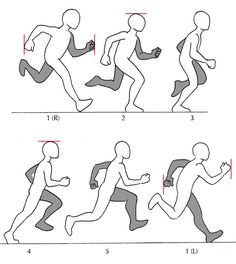 Cartoon Drawing Tips - Cartoon Drawing Tips Human Anatomy Fundamentals: Additional Tips Cartoon Drawing Tips Human Anatomy - Drawing Reference Poses, Animation Reference, Drawing Poses, Drawing Tips, Drawing Tutorials, Painting Tutorials, Manga Posen, Running Pose, Running Art