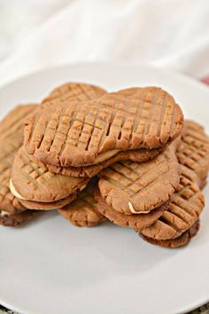 Keto Cookies – Super Yummy Low Carb Copycat Nutter Butter Peanut Butter Cookie Recipe For Ketogenic Diet – Keto Friendly & Beginner – Desserts – Snacks Peanut Cookies, Peanut Butter Fat Bombs, Low Carb Peanut Butter, Chocolate Peanut Butter Cookies, Peanut Butter Cookie Recipe, Keto Cookies, Sugar Cookies, Caramel Au Nutella, Nutella Fudge